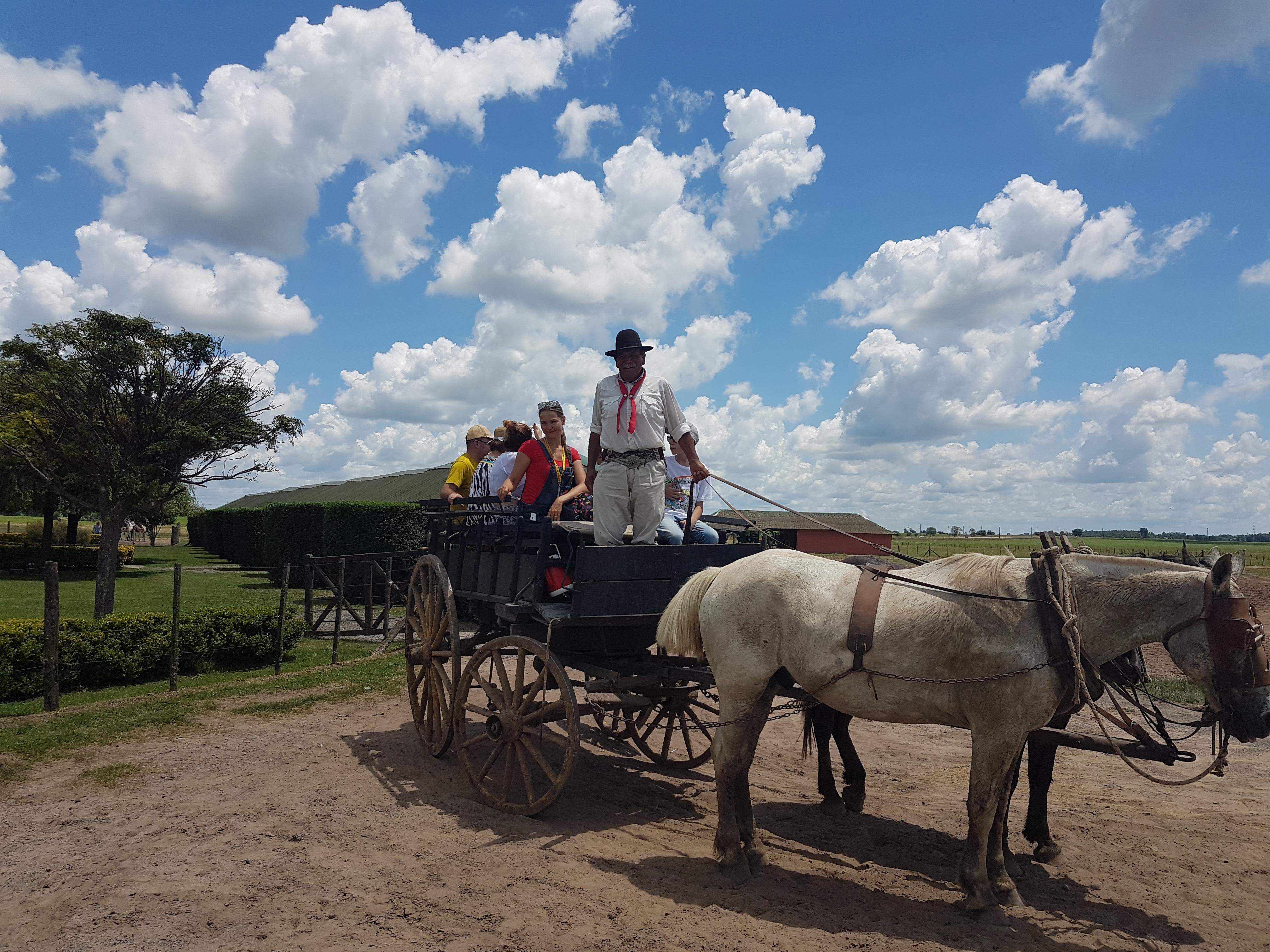 Гаучо-тур в Аргентине - катание на повозке